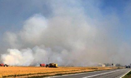Bruciatura stoppie: Sì della Regione per il divieto assoluto