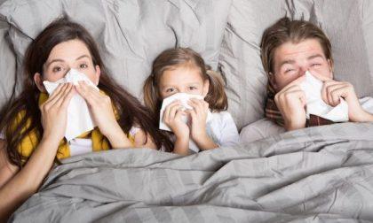 Picco influenza atteso per metà febbraio CONSIGLI UTILI