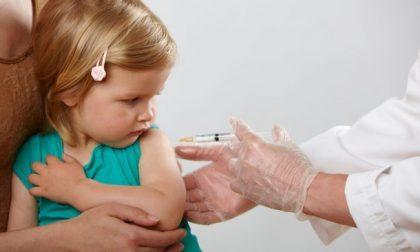"""Medici di base: """"Preoccupati per la gestione dei vaccini"""""""
