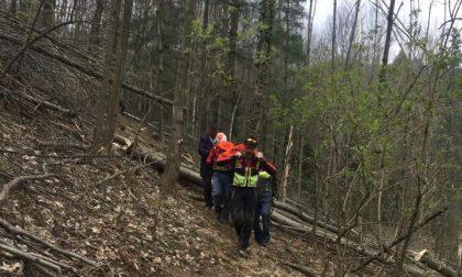 Uomo schiacciato da un albero: corpo recuperato dal Soccorso Alpino