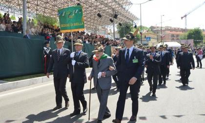 """Adunata, Alessandria """"insidia"""" Biella"""