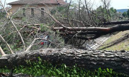 Disastri del maltempo, la Regione chiede lo stato di calamità | FOTO