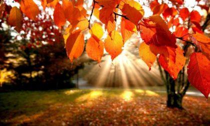 Equinozio autunno 2019: non è oggi, ma il 23 settembre