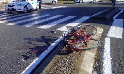 Ciclista travolta ad Alessandria. Dall'inizio dell'anno sono oltre 100 gli investimenti di ciclisti e pedoni