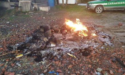 Bruciano rifiuti vegetali a Ovada e i carabinieri intervengono