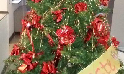 Da AMAG e Comune di Alessandria Alberi di Natale alle parrocchie dei sobborghi alessandrini