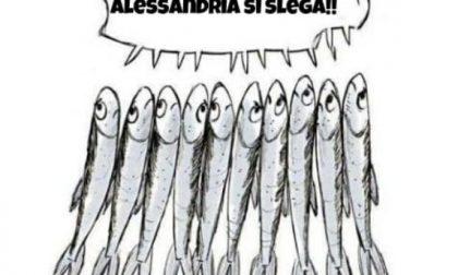 Alessandria, Sardine pronte al Flash Mob di venerdì 6 dicembre