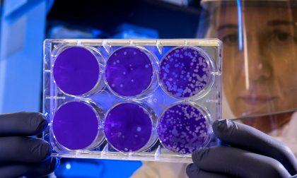 Sono 3762 i pazienti guariti dal Coronavirus in Piemonte