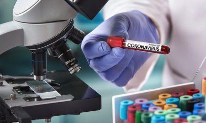 Coronavirus, aggiornamento dati: 3769 contagi ad Alessandria che supera i 600 morti