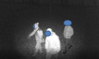 Invadono proprietà privata alla ricerca di tartufi, denunciati 4 giovani (uno minorenne) FOTO