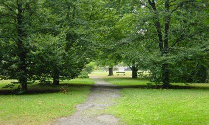 Fine anno scolastico: a Casale il saluto sarà nei giardini pubblici della città