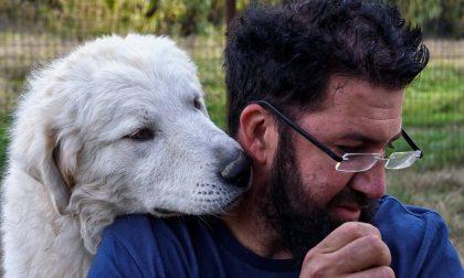 Allevamento di cani da pastore Tortonese in onda su Italia 1