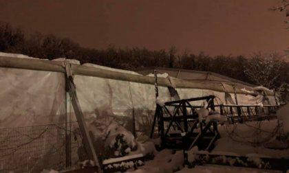 La copertura del PalaHockey di Monleale non regge il peso della neve, danni per 150mila euro