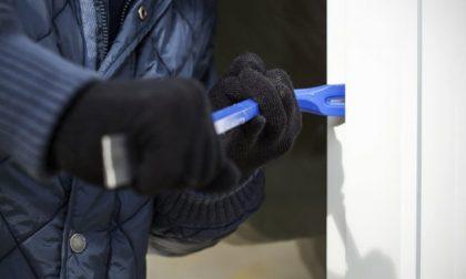 Ventitré rapine tra Alessandria, Cuneo e Asti: condannati a 5 anni di reclusione