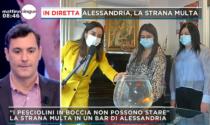 Multa di 100 euro al bar per i pesci rossi nella boccia