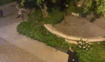 Scaglia con forza bottiglie di vetro contro il rivale: il video della resa dei conti in piazza Marconi
