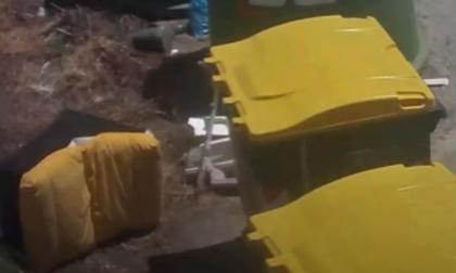 Personale di un'azienda di Valenza abbandonava poltrone a Villabella e Strada Oche