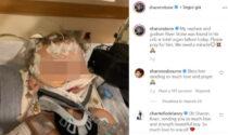 Morto il nipotino di Sharon Stone: il piccolo River non aveva neanche un anno